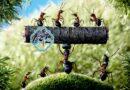 فلسفه امید و تلاش مورچه